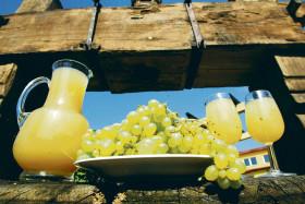 648305-img-burcak-vino-test-alkohol